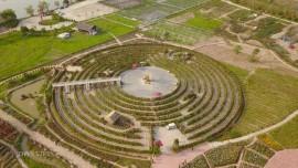 Mê cung hoa lớn nhất Việt Nam đẹp như cổ tích ở Hà Nội