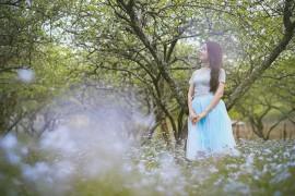 Sapa lạnh lắm, lên ngay Mộc Châu mùa đào, mận bung nở để thấy xứ thần tiên là có thật
