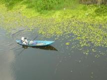 Mùa hè mang cần đi câu tại Vườn quốc gia U Minh Thượng