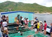 """""""Viên ngọc mới"""" của du lịch Nha Trang – Đảo Bình Ba"""