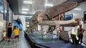 Viện hải dương học, một điểm đến không thể bỏ qua khi du lịch Nha Trang