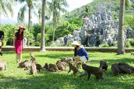 Du lịch Nha Trang nên đi những đâu?