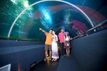 Khám phá Vinpearl Land Nha Trang từ A đến Z