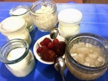 Sữa chua trân châu