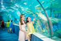 Du lịch Nha Trang có gì đẹp?