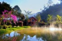 Giới thiệu đôi nét về Ma rừng lữ quán ở Đà Lạt