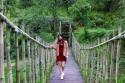 Hình ảnh Ma Rừng lữ quán ở Đà Lạt