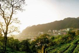 Giới thiệu Bản Đồ du lịch Tam Đảo Vĩnh Phúc