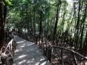 Thông tin Tam Đảo nằm cách Hà Nội bao xa?