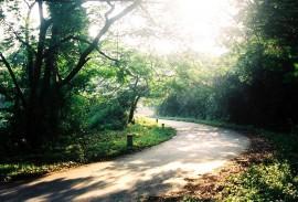 Hướng dẫn đường đi đến vườn quốc gia Ba Vì
