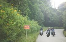 Kinh nghiệm đi du lịch phượt vườn quốc gia Ba Vì bằng xe máy