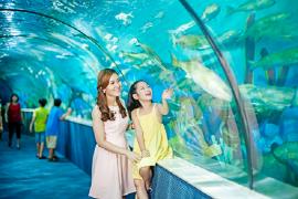 Giờ mở cửa Times City ở Hà Nội