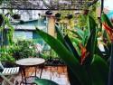 Chia sẻ thông tin du lịch Hà Nội tự túc