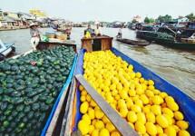 Tour Du Lịch Việt Nam (Nam - Trung - Bắc) - Campuchia 21 Ngày 20 Đêm