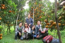 Tour Du Lịch Sài Gòn – Cà Mau – Bạc Liêu – Sóc Trăng – Cần Thơ 5 Ngày 4 Đêm