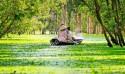Rừng tràm Trà Sư An Giang – Điểm đến du lịch sinh thái
