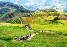 Tour Hà Nội - Sapa - Lao Chải - Tả Van - Giàng Tà Chải - Cát Cát 2 Ngày 1 Đêm