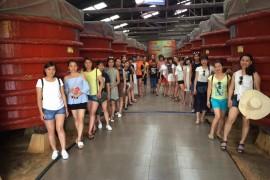 Tour Tham Quan Bắc Đảo – Nam Đảo Phú Quốc 1 Ngày