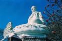 Thích Ca Phật Đài – biểu tượng du lịch Vũng Tàu hơn nửa thế kỷ