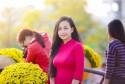Chia sẻ kinh nghiệm đi du lịch Đà Nẵng dịp tết