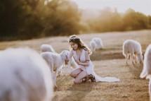 """Cánh đồng cừu Suối Nghệ - địa điểm chụp hình """"siêu chất"""" ở Bà Rịa - Vũng Tàu"""