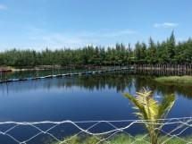 """Khu du lịch Gió Biển - điểm đến """"siêu hot"""" ở Hồ Tràm, Vũng Tàu"""