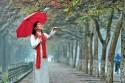 Điểm qua những điều cần lưu ý khi đi du lịch Hà Nội theo mùa