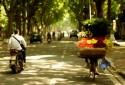 Những điều cần biết khi đi du lịch Hà Nội theo tháng
