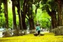Những điều cần biết khi đi du lịch Hà Nội tự túc theo tháng