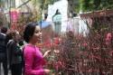 Tiết lộ bí quyết khi đi du lịch Hà Nội theo mùa
