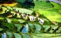 Một chuyến lên Sapa khám phá nét đẹp bản Lao Chải - Tả Van