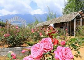 Ghé lại tham quan 5 bản làng đẹp ở Sapa khiến lòng người mê mẩn
