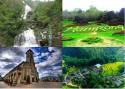 Núi Hàm Rồng Sapa có gì? Du khách đã biết chưa?