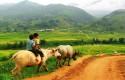 Top 15 địa điểm du lịch tại Sapa làm ngất ngây khách du lịch