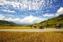 Bí quyết khi đi du lịch bụi Sapa bằng xe máy theo tháng