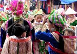 Tour Du Lịch Hà Nội - Hạ Long - Tuần Châu - Hoa Lư - Tam Cốc - Sapa 7...