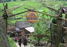 Tour Du Lịch Đà Nẵng – Hạ Long – Tuần châu – Sapa 6 Ngày