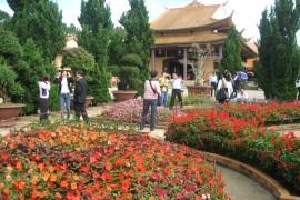Tour Du Lịch Hà Nội - Nha Trang - Đà Lạt 5 Ngày 4 Đêm