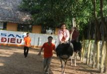 Tour Du Lịch Miền Tây 1 Ngày (Chợ Nổi Cái Bè - Kdl Vinh Sang )