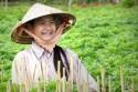 Du lịch tham quan cảnh đẹp Việt Nam