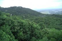 Đường lên núi Minh Đạm ở Vũng Tàu