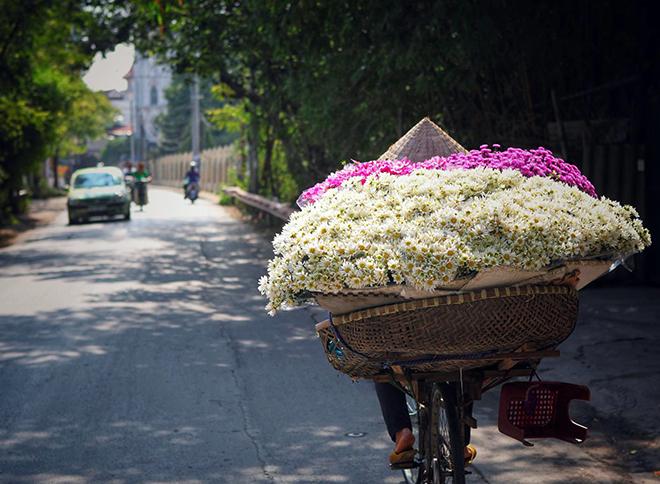 Description: Những địa điểm chụp ảnh cúc hoạ mi đẹp tinh khôi không thể bỏ lỡ ở Hà Nội - 6