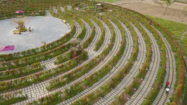 Description: Clip: Mê cung hoa lớn nhất Việt Nam đẹp như cổ tích ở Hà Nội - 5