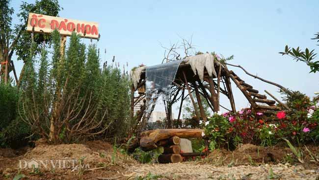 Description: Clip: Mê cung hoa lớn nhất Việt Nam đẹp như cổ tích ở Hà Nội - 8