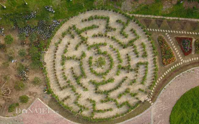 Description: Clip: Mê cung hoa lớn nhất Việt Nam đẹp như cổ tích ở Hà Nội - 13