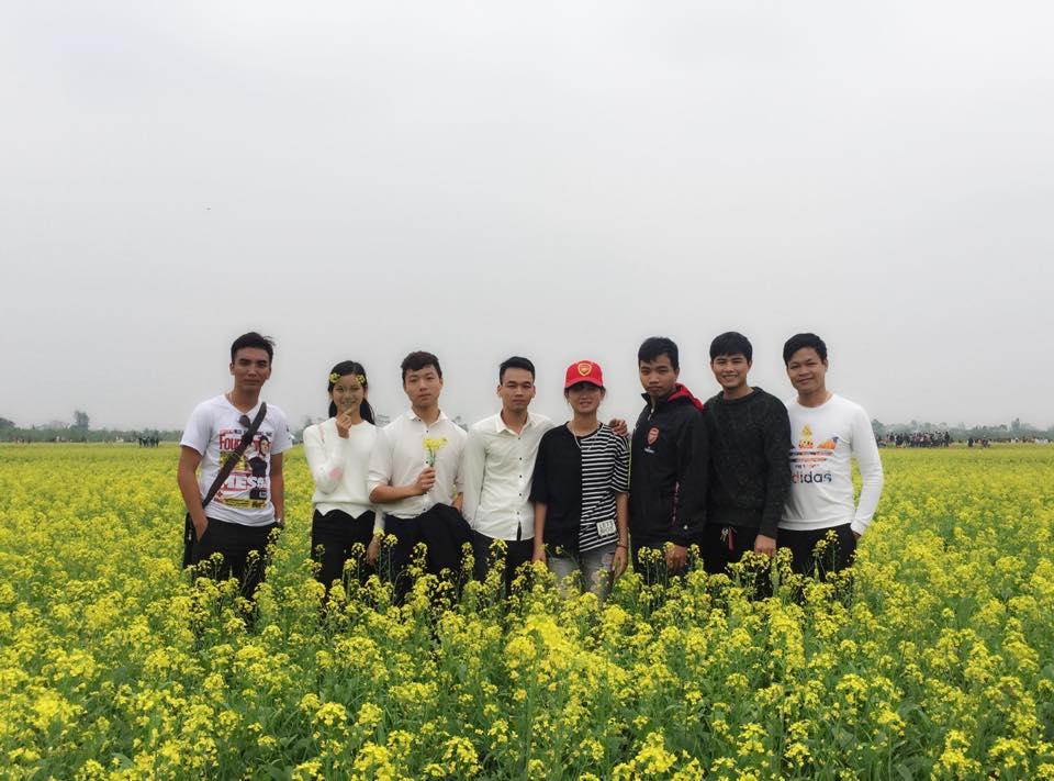 Description: Ngẩn ngơ ngắm cánh đồng hoa cải vàng nở rộ ở ngoại thành Hà Nội - 7