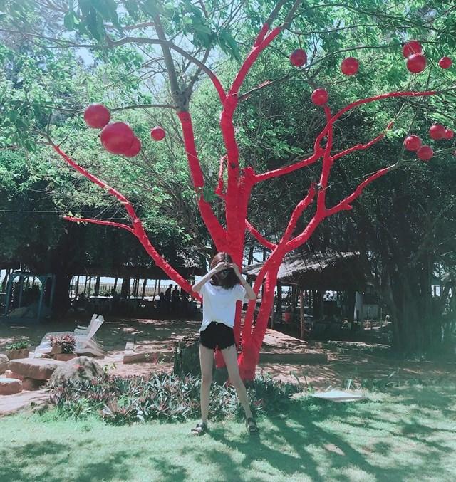 """Set kèo """"bung lụa"""" với Khu cắm trại Zenna Pool Camp tuyệt đẹp ở Vũng Tàu"""