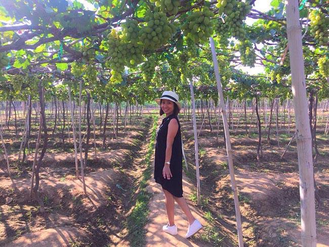 Description: Về Ninh Thuận thỏa thích hái nho đầy túi, lại săn ảnh đẹp mang về - 4