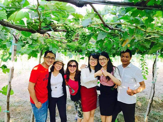 Description: Về Ninh Thuận thỏa thích hái nho đầy túi, lại săn ảnh đẹp mang về - 9