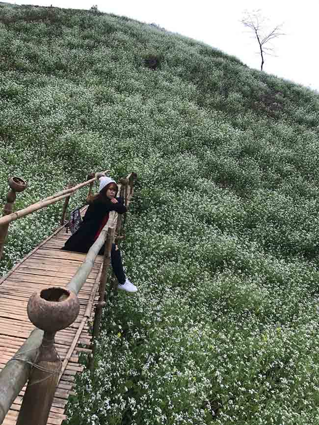 Description: Sapa lạnh lắm, lên ngay Mộc Châu mùa đào, mận bung nở để thấy xứ thần tiên là có thật - 4